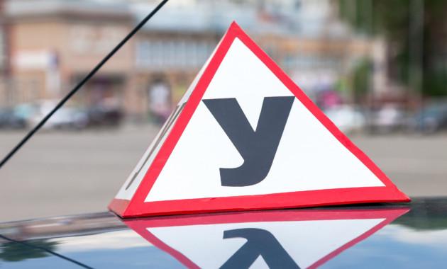 Новые ПДД: В Российской Федерации водителей вынудили предупреждать ошипах