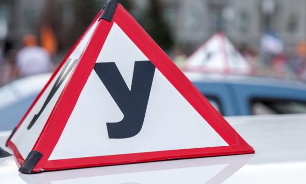 ВРФ вдвое возросло количество выданных интернациональных водительских прав