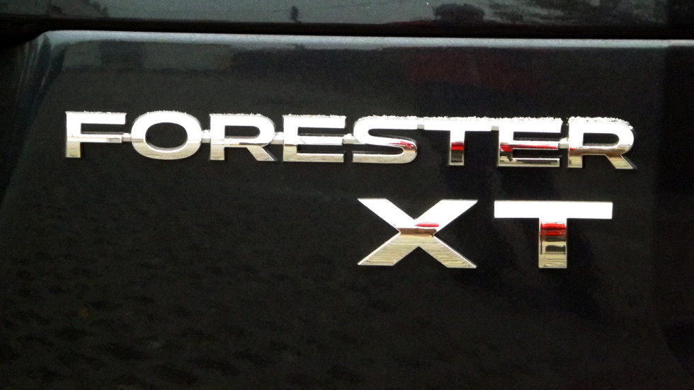 Forester_8