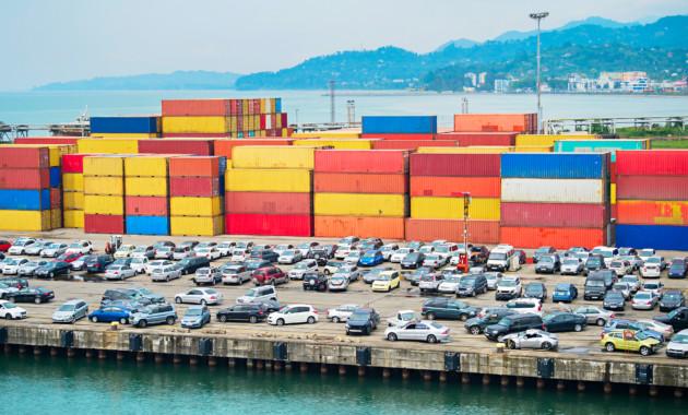Новозеландцев японских автомобилей лишили клопы