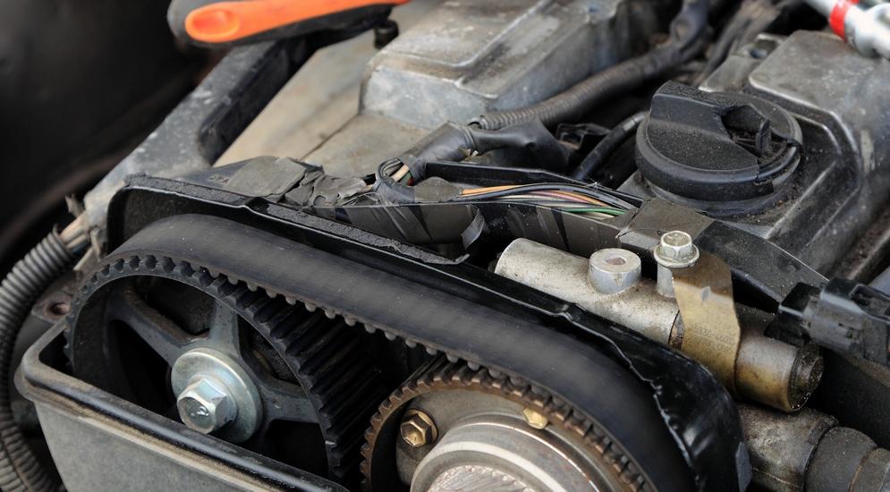 модели авто фиат с цепным приводом грм