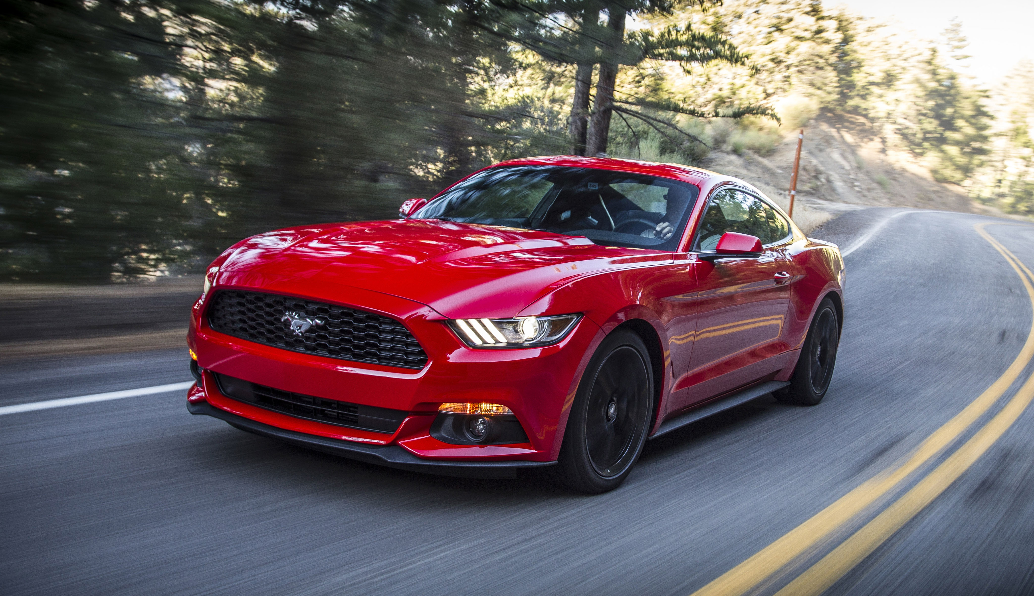 ford_mustang_ecoboost_coupe_15.jpg
