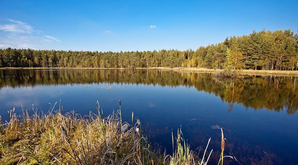 озера во  ногинском районе на рыбалки