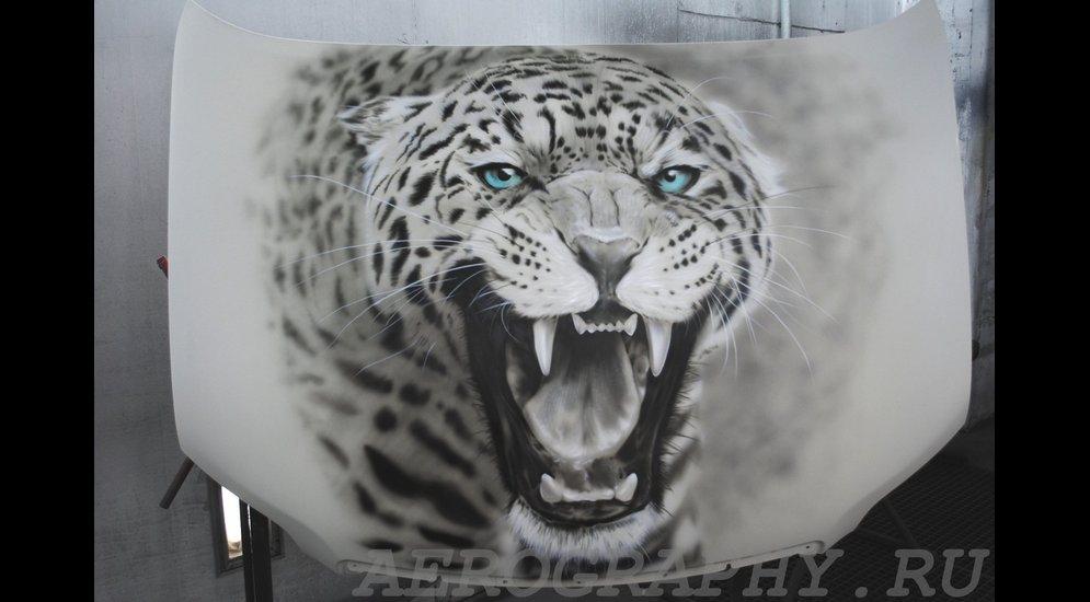 леопард на капоте 22 тыс.JPG