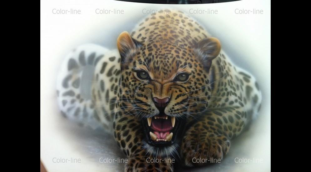 капот леопард 25 тыс.jpg